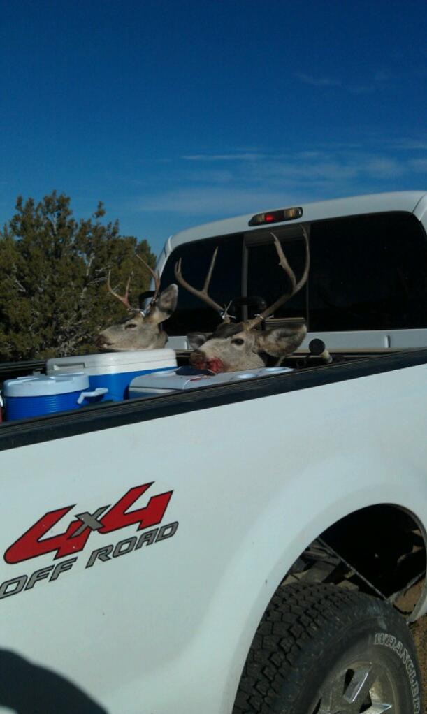 Just got back from hunting!-100media-imag0080.jpg