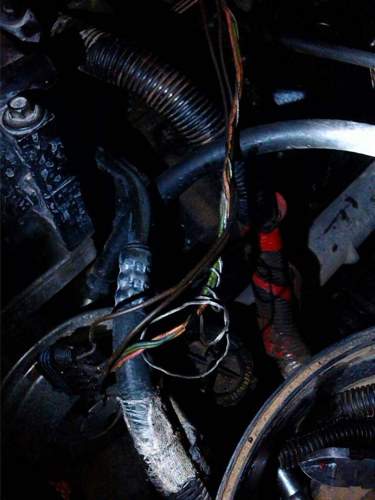 Wiring glow plugs-1382318091252.jpg
