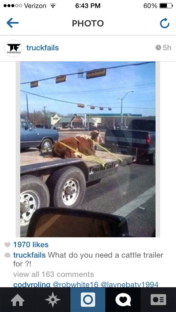 Funny Truck Memes Page 24 Ford Powerstroke Diesel Forum