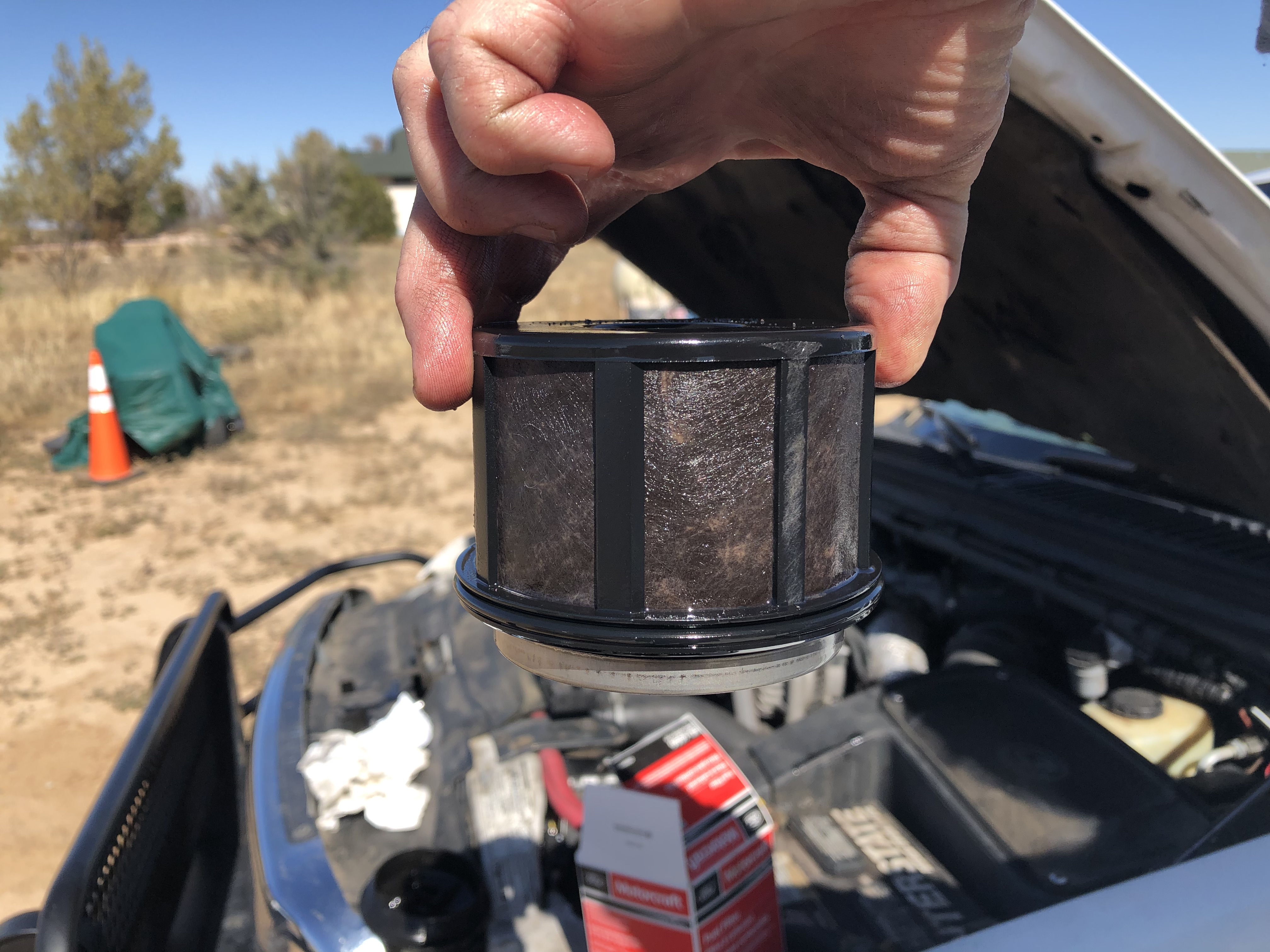 What did you do to your 7.3 Today?-2019-10-12-old-fuel-filter.jpg