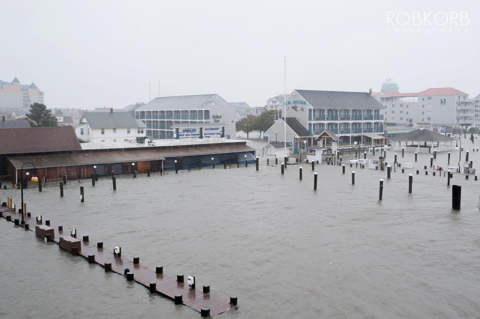 Hurricane Sandy-404762_483835844981140_979629119_n.jpg