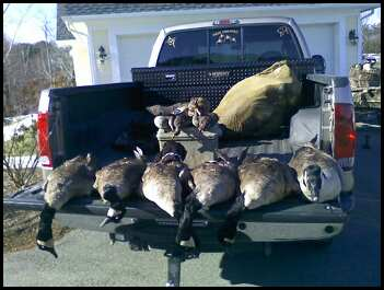 a couple goose hunting videos-488277216_1713585952_0.jpg