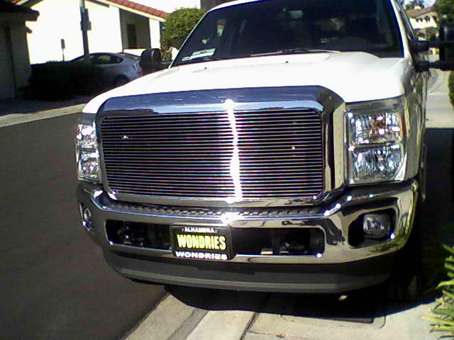 first step to building the beast, t-rex billet grille-billet-grille.jpg