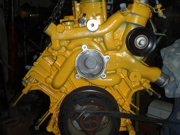 project 6.0  2.6 puller!!!-cat-yellow.jpg