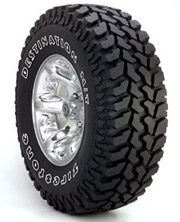 Tires-destinationmt1.jpg