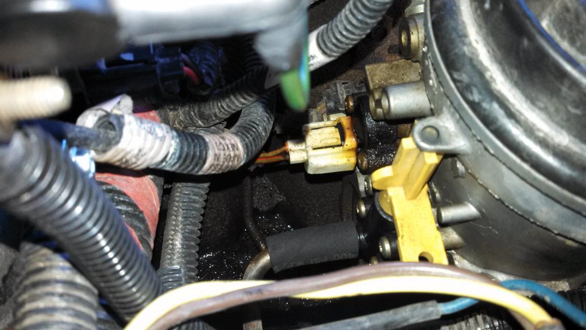 Diesel leak! Fuel bowl?-dieselleak.jpg