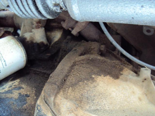 Oil Leak Help-dsc00988-1.jpg