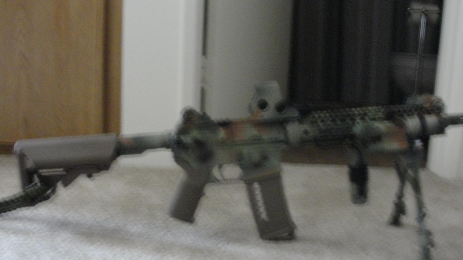 What of type of AR?-dsc01047.jpg