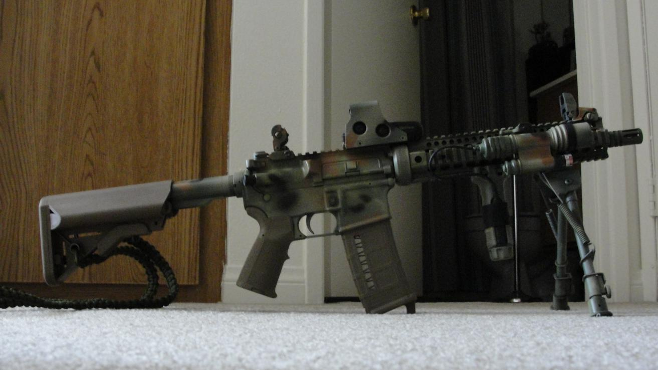 What of type of AR?-dsc01053.jpg