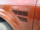 Solid Color King Ranch-dsc03779-1-1.jpg