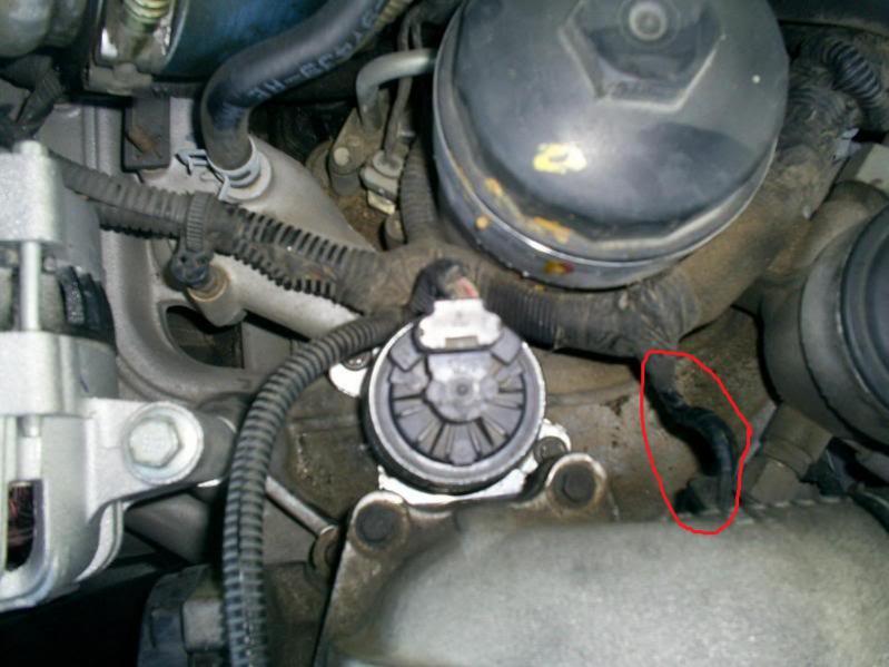 Unplugging EGR/what do I unplug-egr-02.jpg