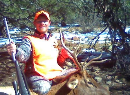 Colorado Elk Hunt-elk1-2.jpg