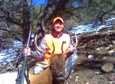 Colorado Elk Hunt-elk2-2.jpg