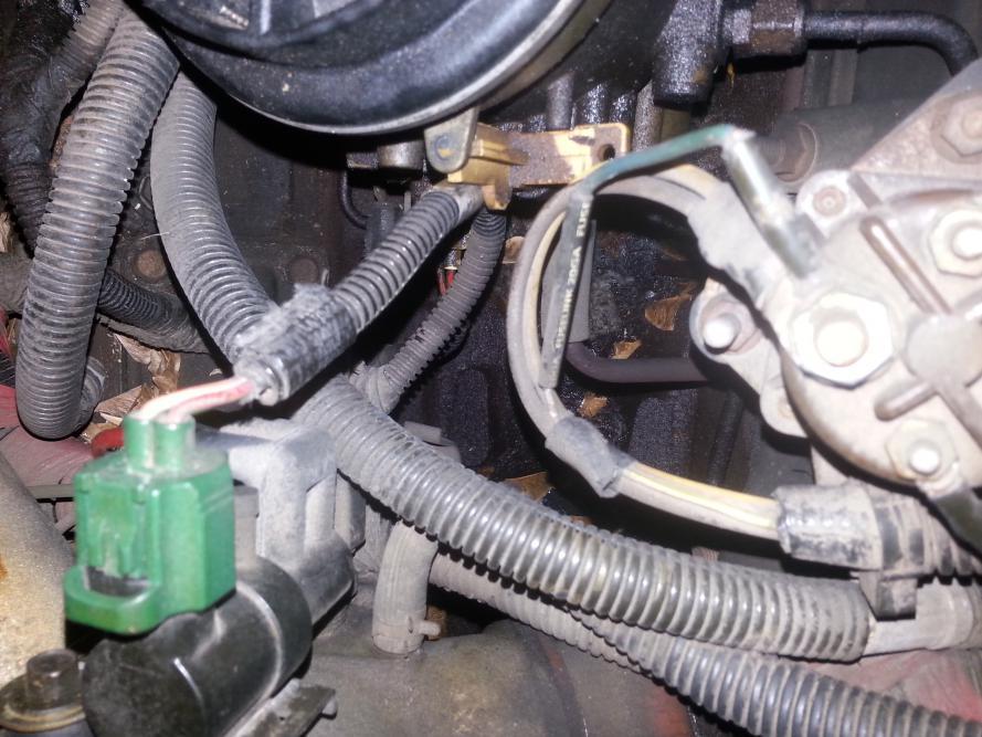 FUEL LEAK..HELP!-fuel-2.jpg