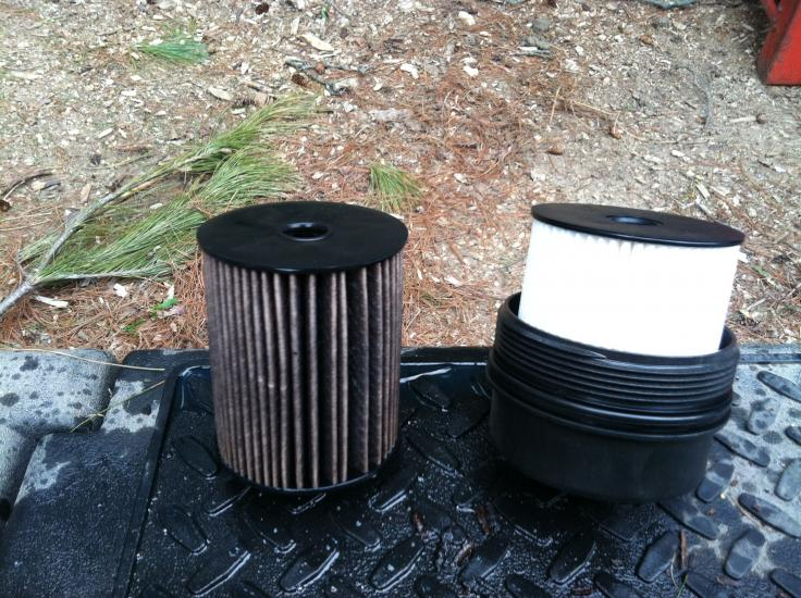 Dirty fuel filter-image.jpg