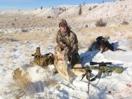 Coyote hunters-imageuploadedbyautoguide1330371752.410351.jpg