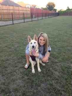 ::Puppies::-imageuploadedbyautoguide1382582913.451251.jpg