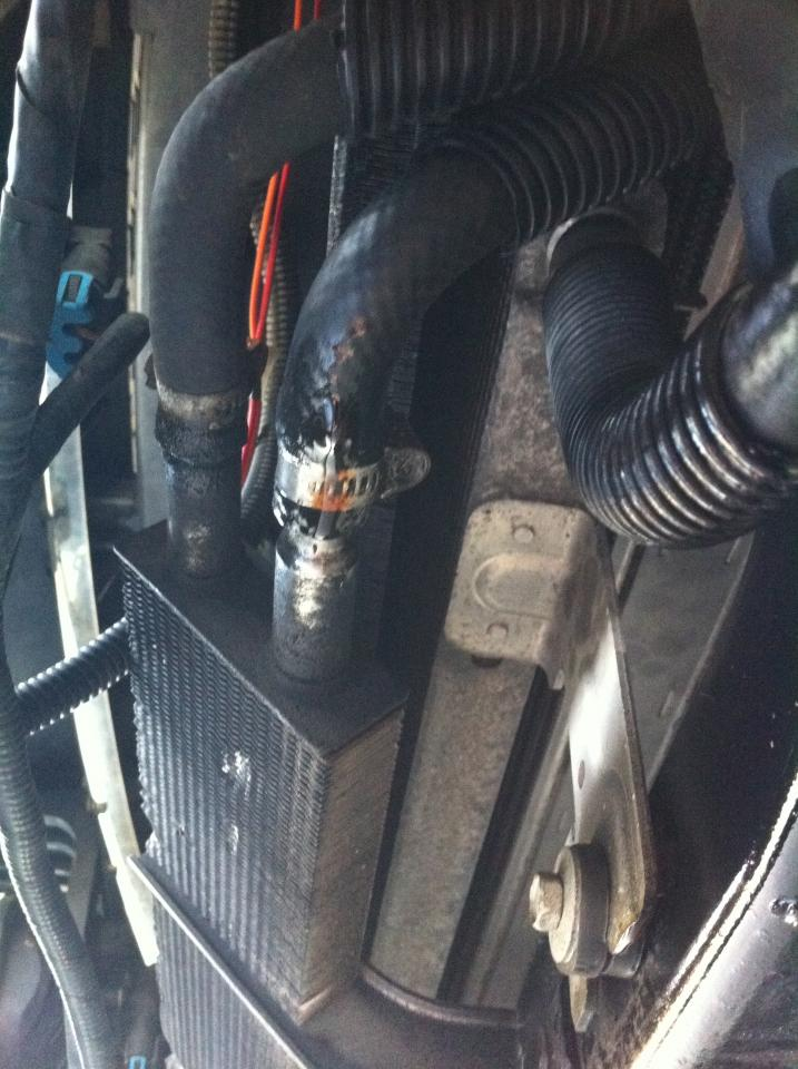 power steering cooler leaking   pics included
