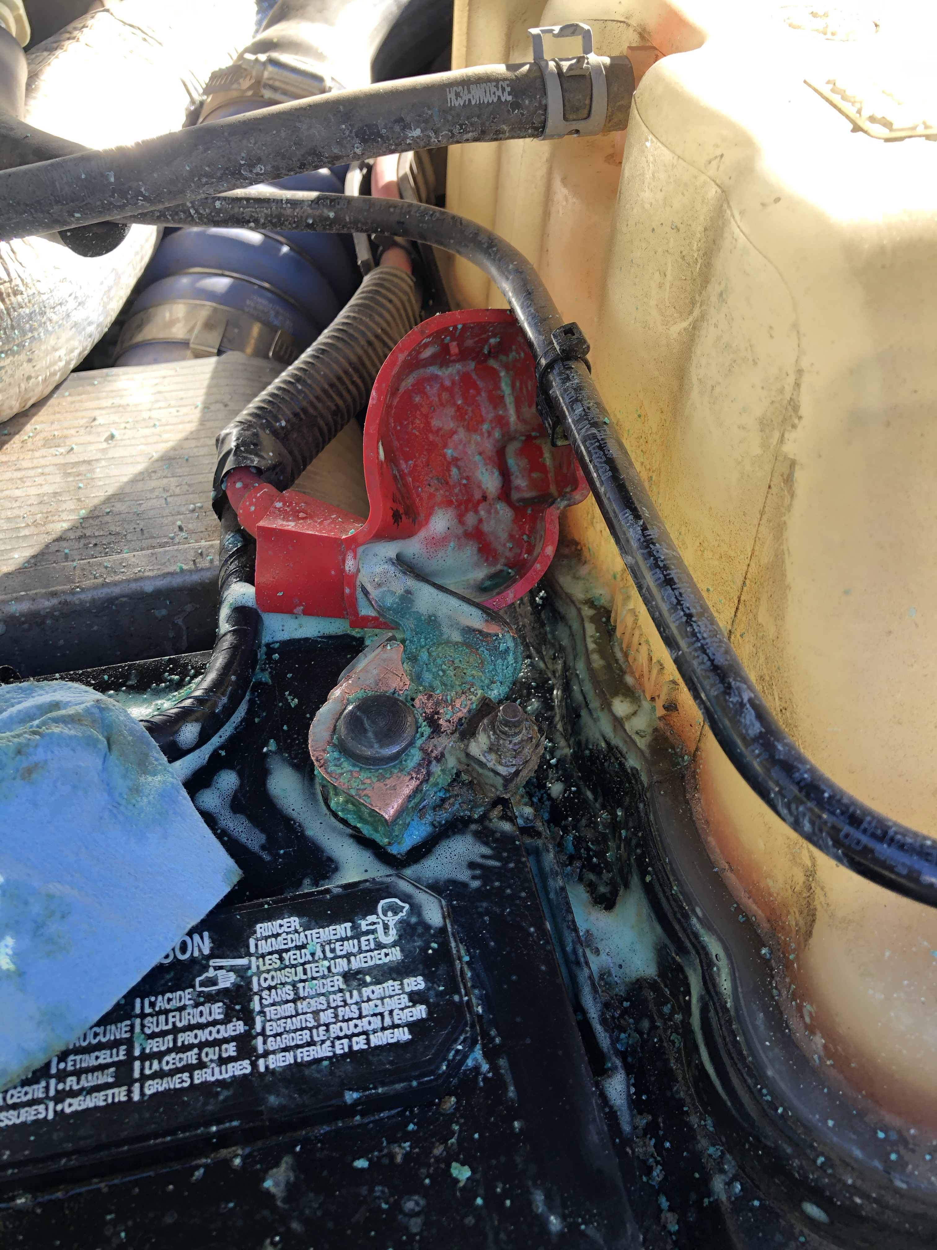 Excessive Battery Terminal Corrosion-img_3685.jpg