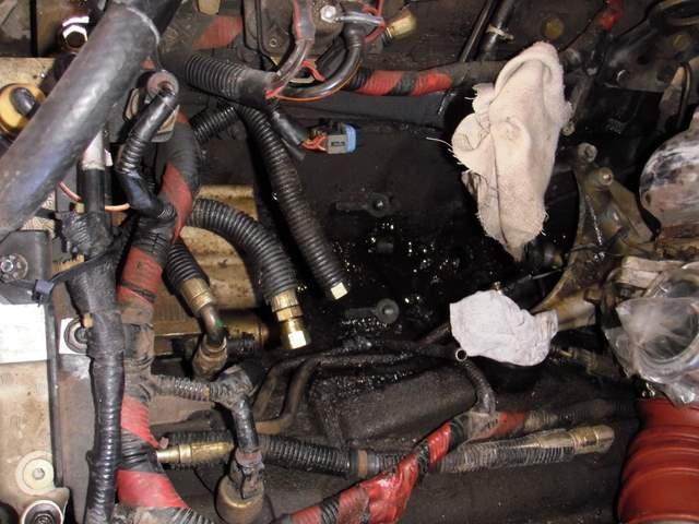 Ford Alternator Wiring Diagram Furthermore 240z Wiring Harness 5 0
