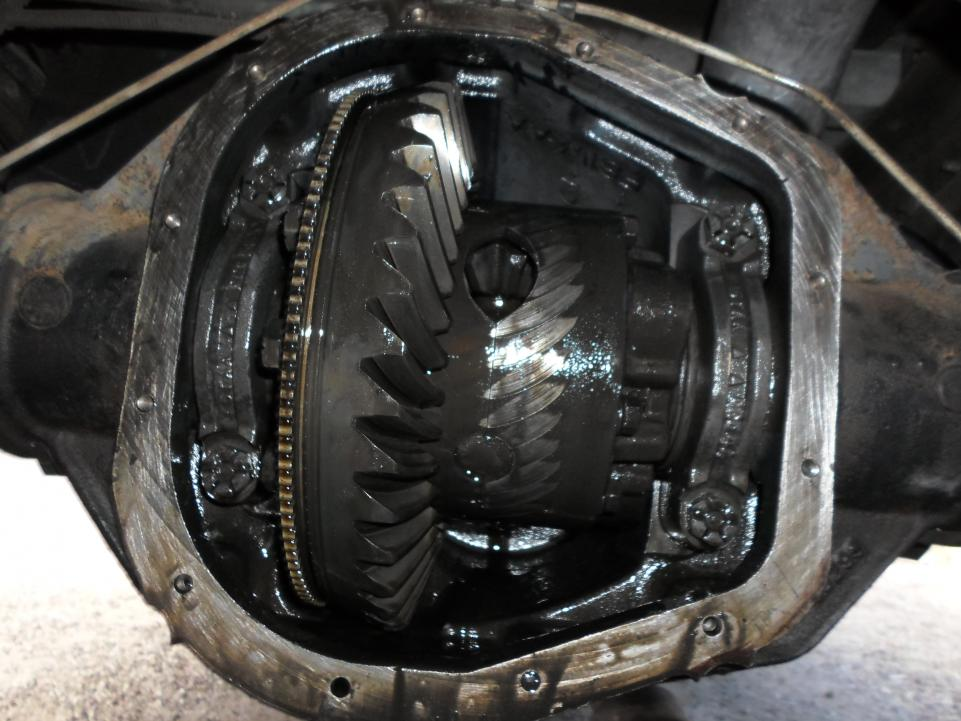 Rear differential noise-sam_0282.jpg