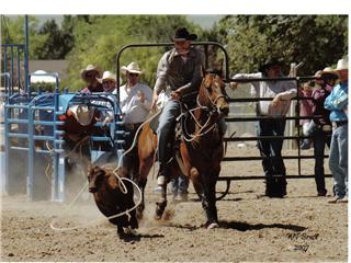 Anyone Rodeo?-state-rodeo-3.jpg