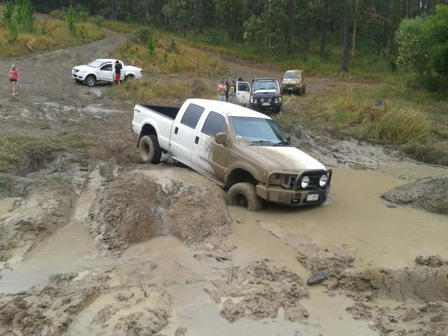 New from Australia-stuck.jpg
