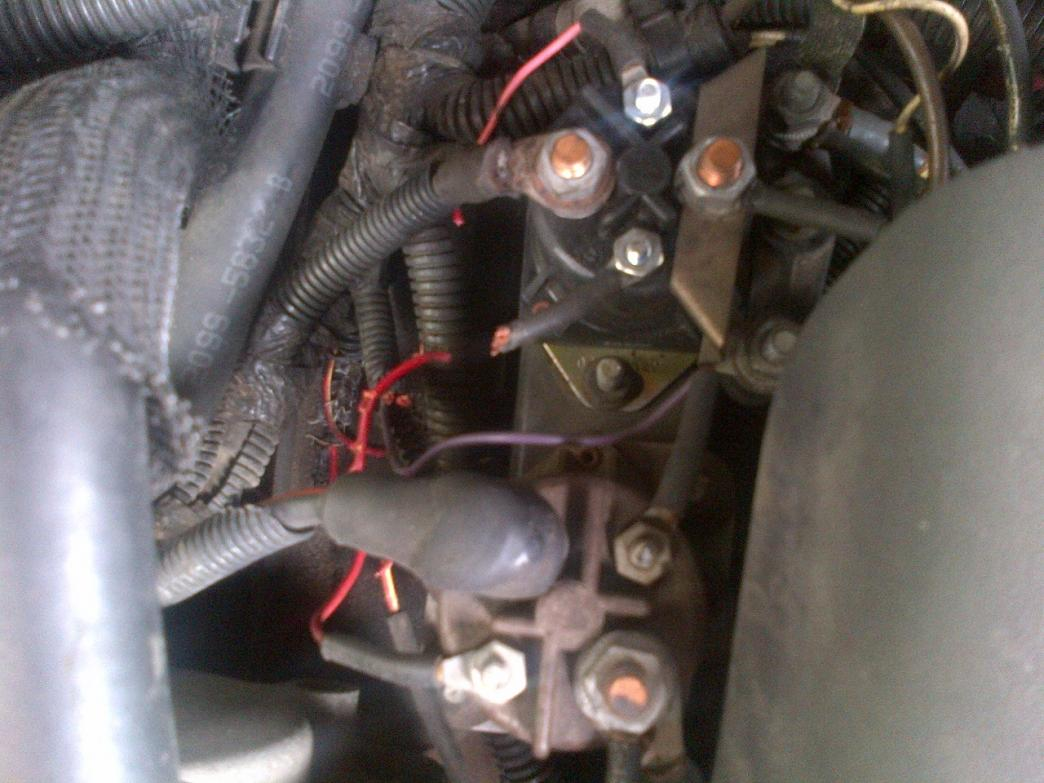 Ignition on warm up issues-wires-chewed-up.jpg