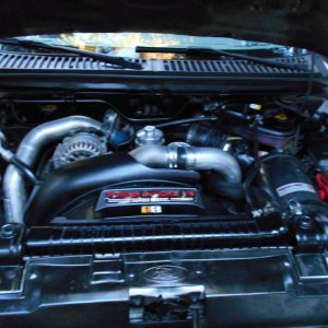 engine bay at first clean up.jpg